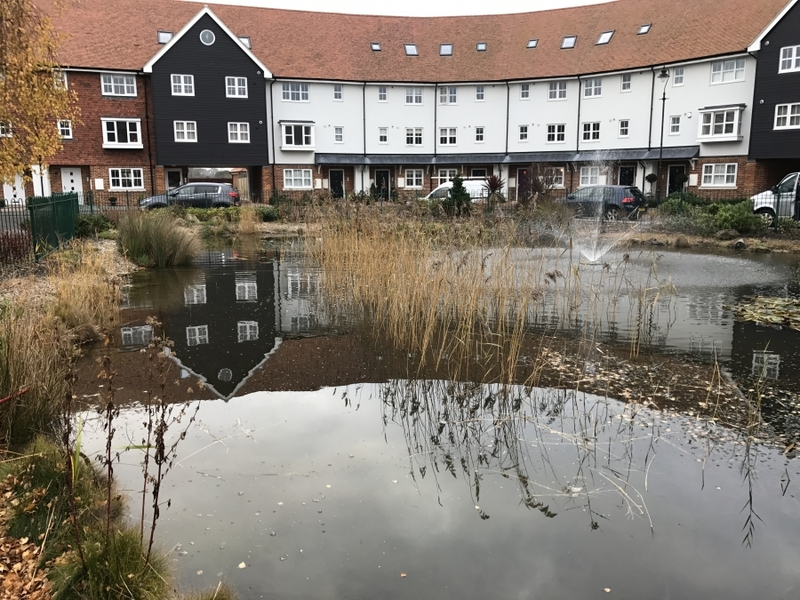 Residential Pond Maintenance, Sandwich, Kent