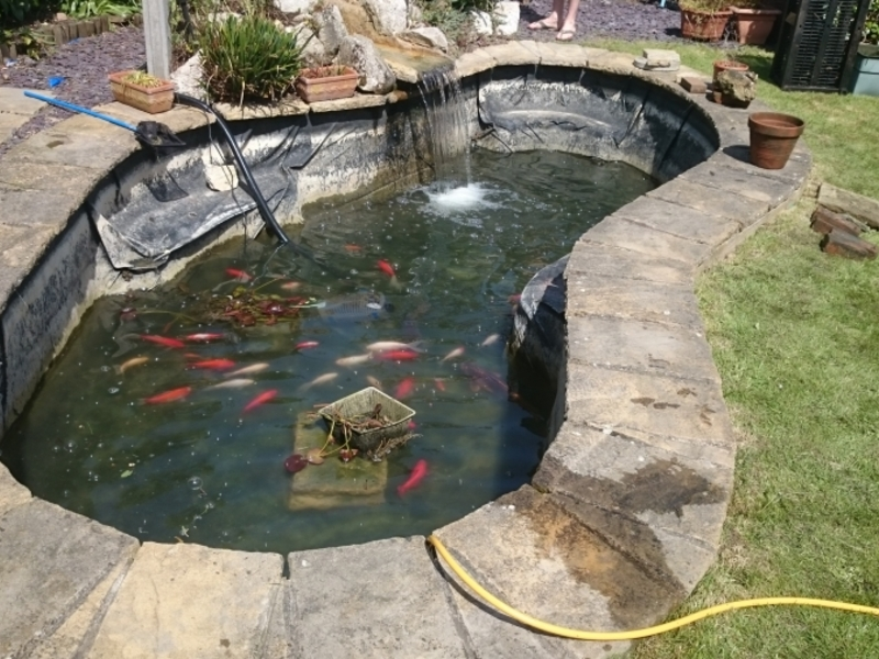 Chelmsford, Essex pond clean and filter replacement