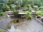 Great Hallingbury Essex pond clean