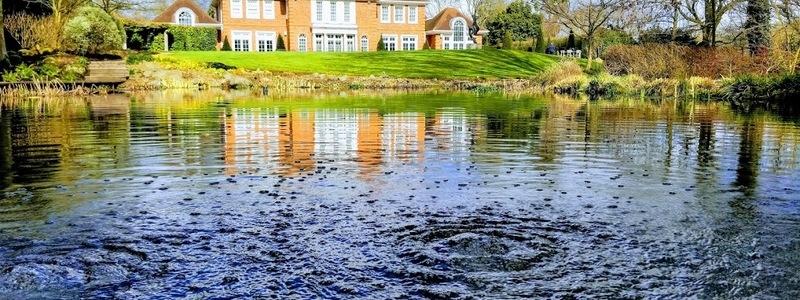 Water quality & Fish health testing