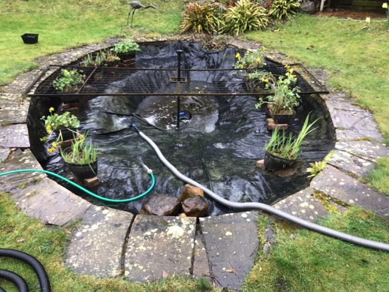 Professor Ian Gordon pond clean, Cambridge