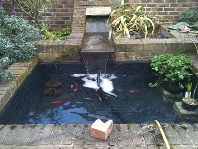 Cambridge pond & water feature renovation
