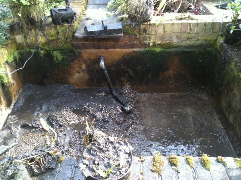 Cambridge pond & water feature renovation