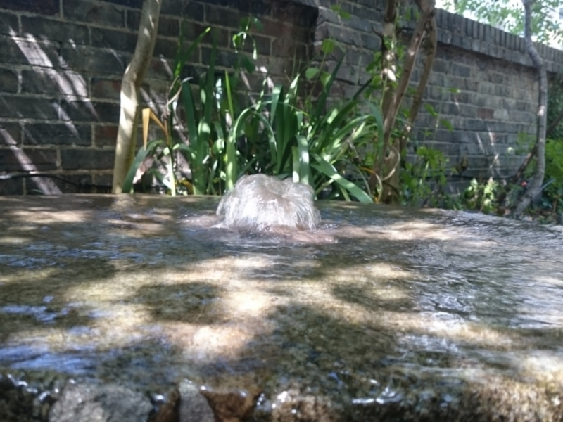 Garden waterfeature clean in Holloway, Islington, London
