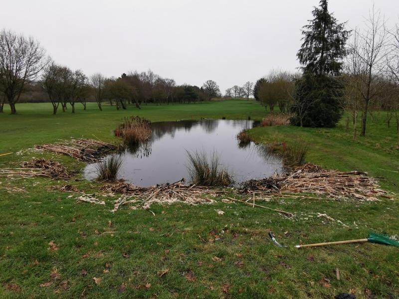 London Pond management Dyrham Park Golf Course in Barnet