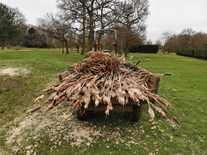 London Pond management Dyrham Park Golf Course in Barnet