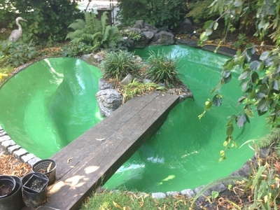 Pond cleaning and resealing in Hampstead Heath, London.