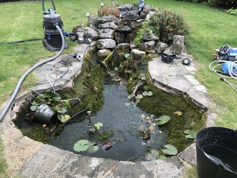 Pond clean in Highgate, London