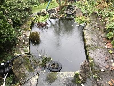 Pond clean in Nazeing, Essex