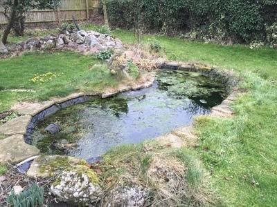 Erith Cambridgeshire pond clean