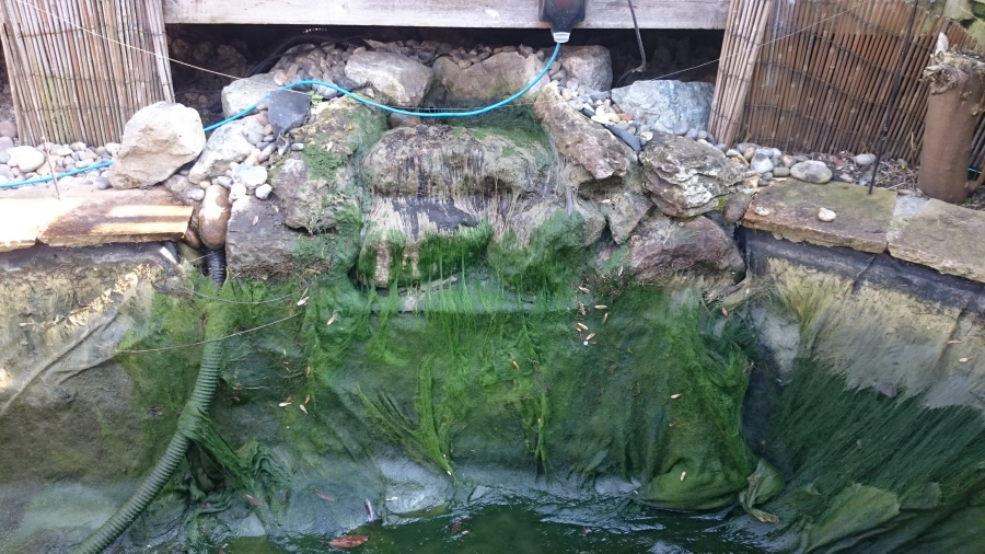 Stevenage Hertfordshire pond and waterfall clean
