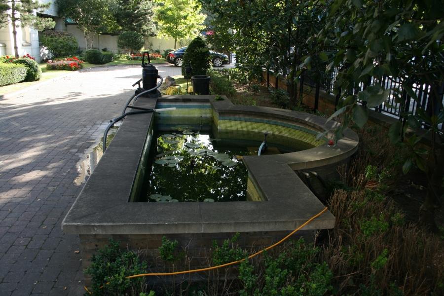 Islington, London pond clean & re sealing