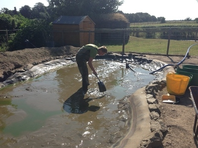 Duck pond cleanin in Kings Langley, Hertfordshire