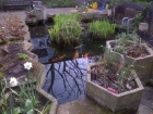 Pond fibreglassing Care home in Southwark London
