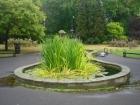 Pond fibreglassing Hendon London