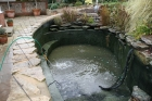 Pond clean Loughton Essex